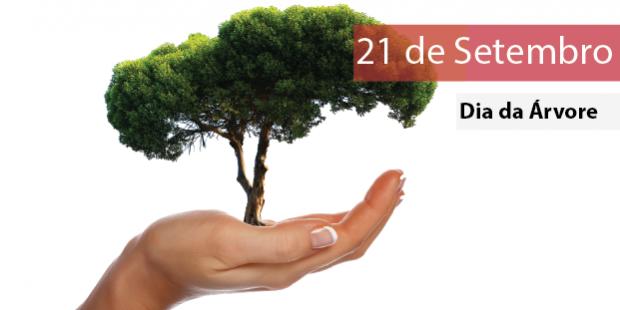 Dia da Árvore – 21 de setembro